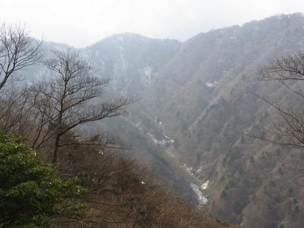Oonosawa